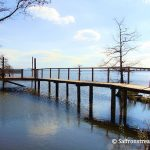 Lake Matamuskeet – North Carolina